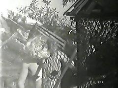 Broom Rakes Pruner vs Trash Cocks Bushes