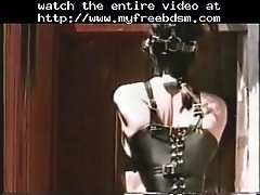Pony Babe BDSM Bondage Slave Femdom Domination