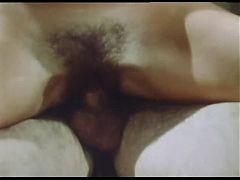 Sex Loose
